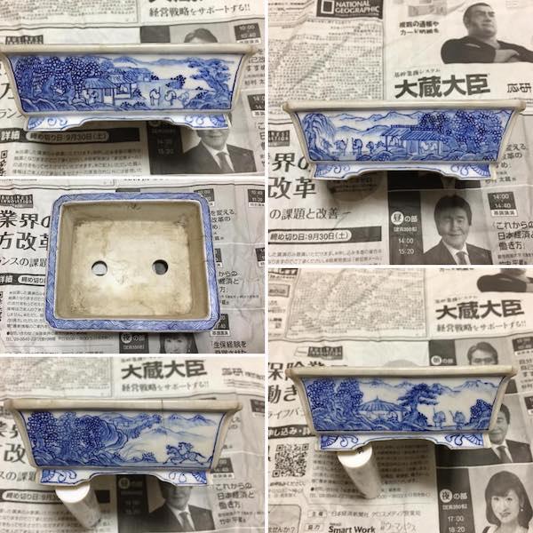 Chậu bonsai mini PLD585
