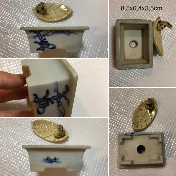 Chậu mini bonsai PLD335