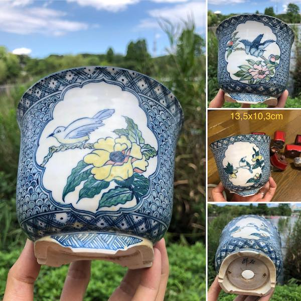Chậu bonsai vẽ tay PLD324