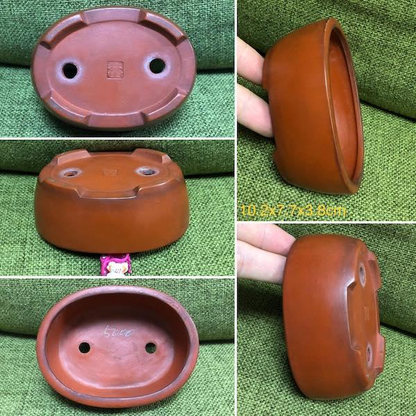 Chậu mini dáng oval PLD948