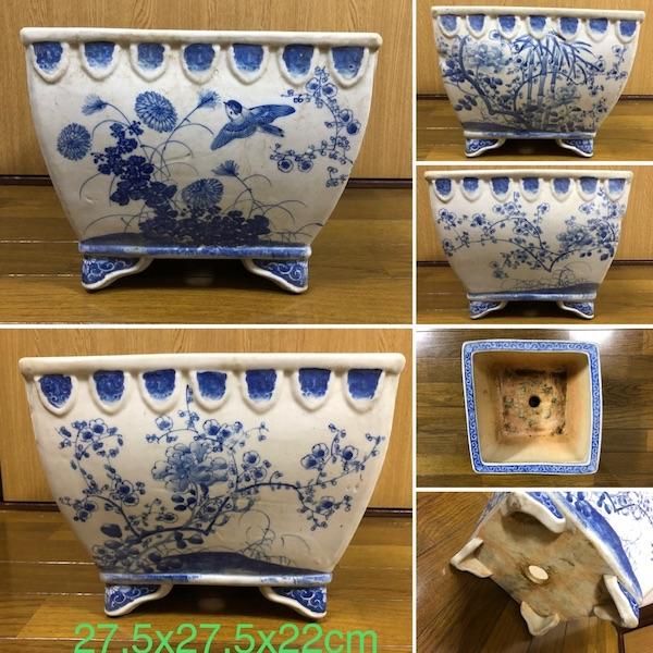 Chậu bonsai Nhật Bản P276