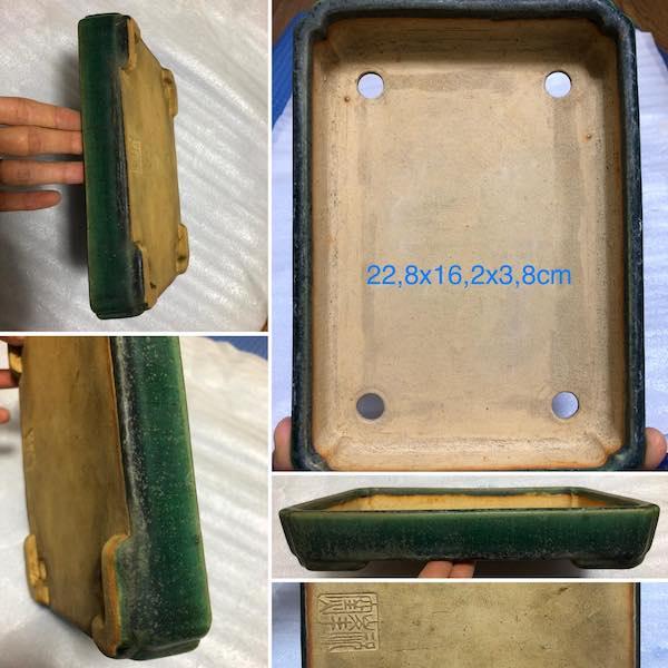 Chậu bonsai thương hiệu cao cấp PLD683