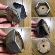 Chậu điêu khắc mini PLD941