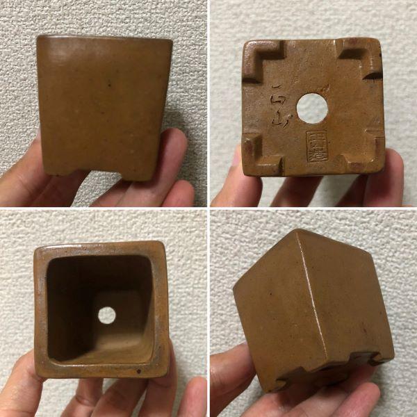 Chậu điêu khắc mini PLD1018