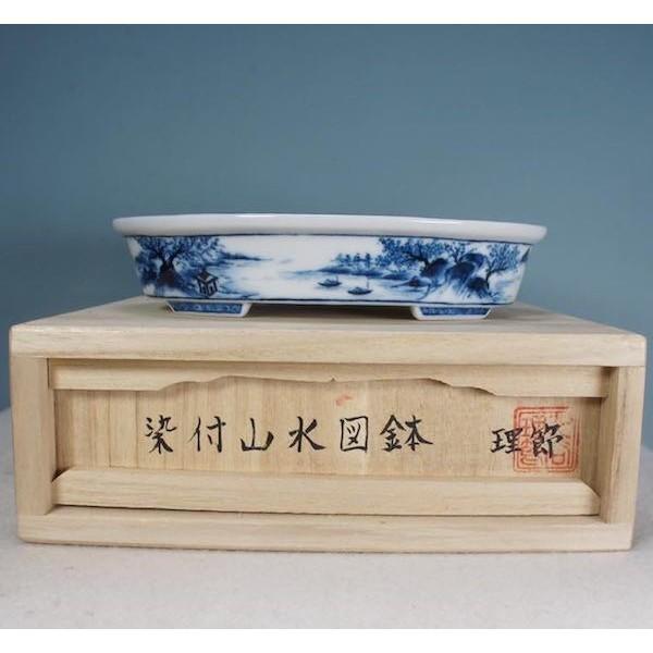 Chậu bonsai mini PLD137