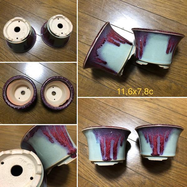 Cặp chậu bonsai mini PLD115