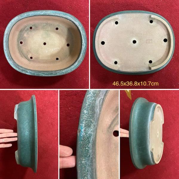 Chậu bonsai dáng Oval PLD66