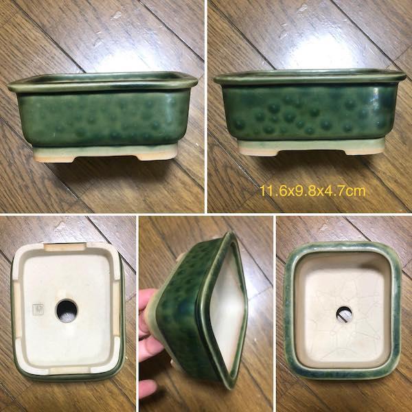 Chậu bonsai chữ nhật PLD11